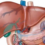 liver_problems