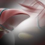liver_regeneration